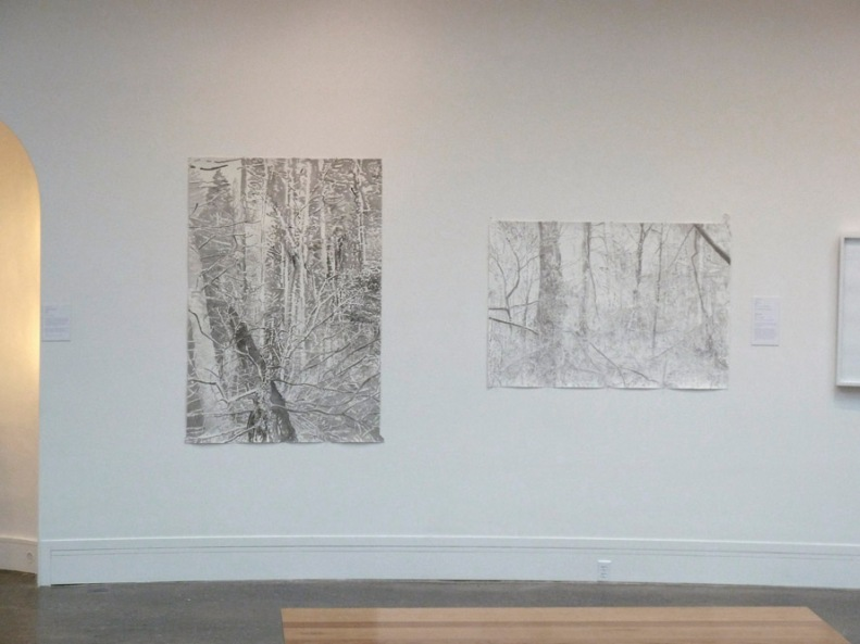 2 drawings hanging at the Woodmere