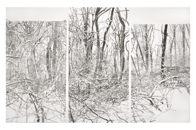 "Elegy,  (triptych), 2004, ink on paper, 98"" x 164"", Collection Princeton University Art Museum"