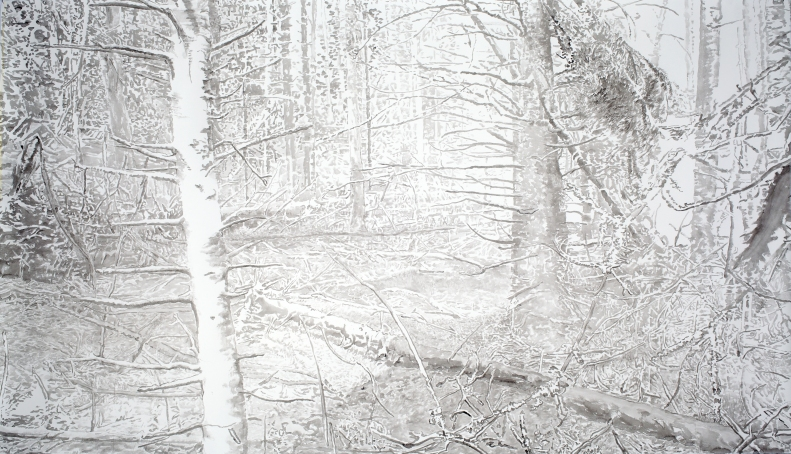 Creek bed, 2014, ink on paper, 53 x 93 inches