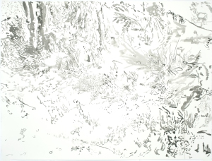 Grasses C, 2012, ink wash on cold press paper, 45 1/8 x 38 3/8 inches